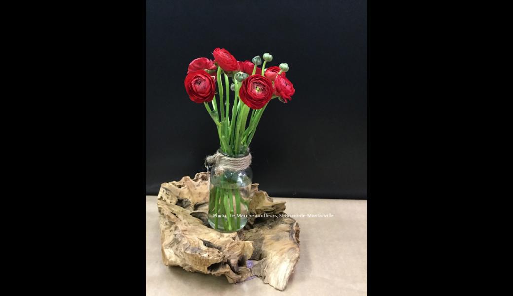 Bouquet simple et léger de renoncules rouges.