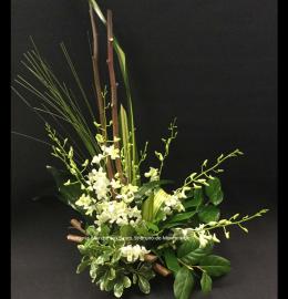 Création funéraire Magog. Arrangement composé de délicates orchidées blanches réunies au centre d'un croissant de feuillages verdoyants. De 75$ à 100$.
